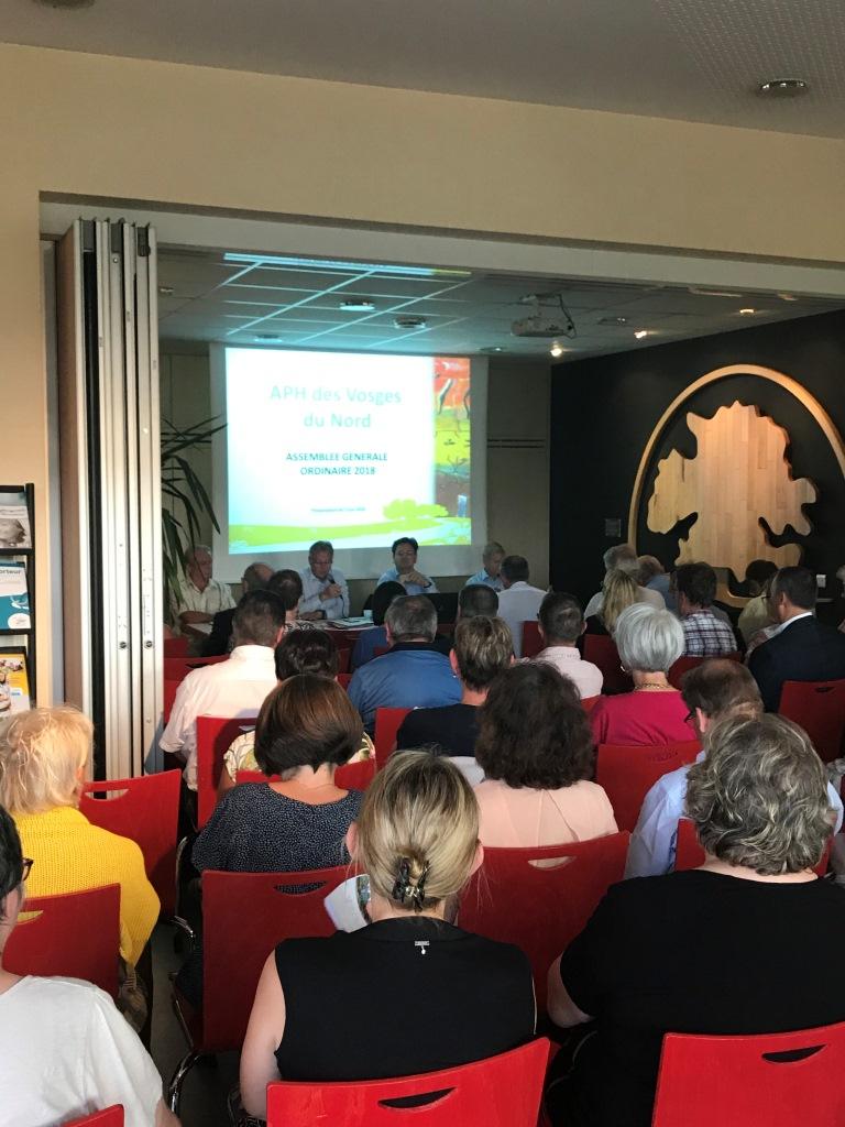 Historique de l'association APH des Vosges du Nord